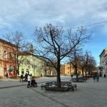Zmaj Jovina ulica u Novom Sadu